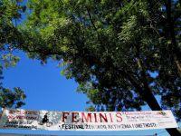 feminis201322